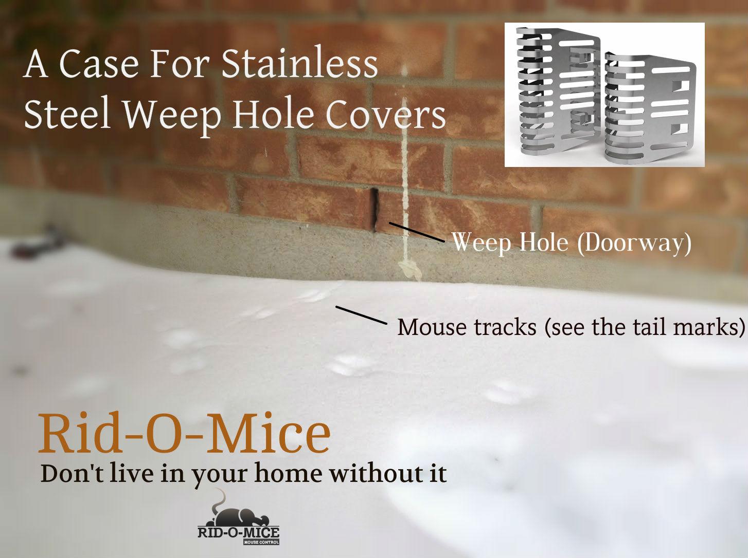 rid-o-mice