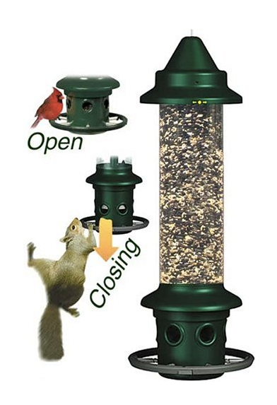 squirrel proof bird feeder in action