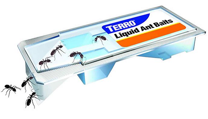 terro ant killer liquid